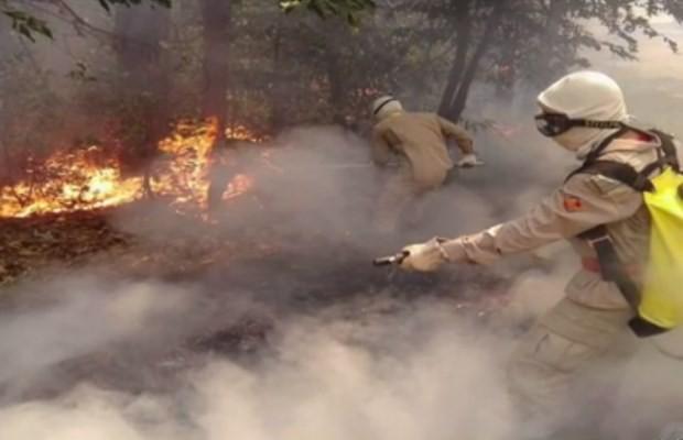 Bombeiros combatem incêndio na Serra de Jaraguá, em Goiás (Foto: Divulgação/ Corpo de Bombeiros)