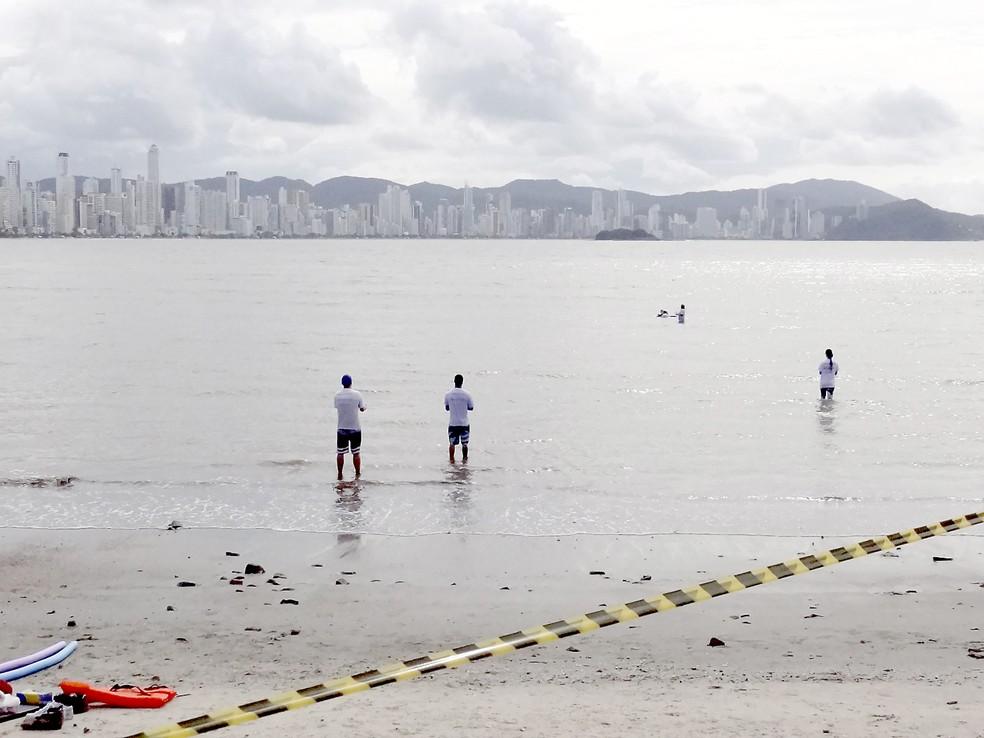 Golfinho foi resgatado na Praia Central, em Balneário Camboriú (Foto: Pedro Homrich/Divulgação)