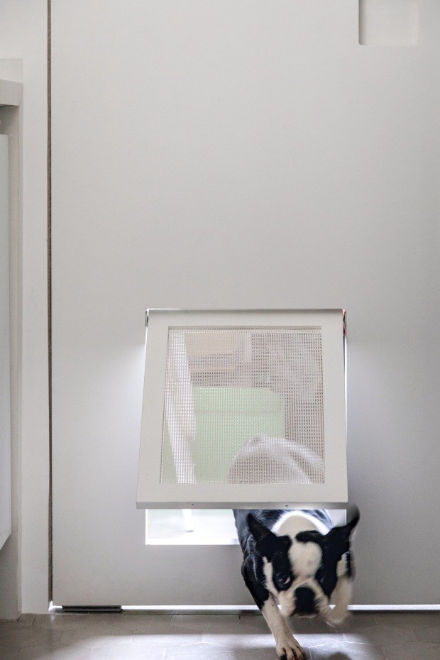 Mobilidade. Projetada pelo arquiteto Gabriel de Lucca, a porta vaivém de MDF com acabamento de palhinha permite a passagem da boston terrier Pennyleia entre a cozinha e a área de serviço (Foto: Fran Parente / Divulgação)