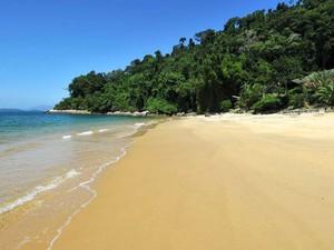 Praia do Algodão (Foto: Reprodução/Private Islands Online)