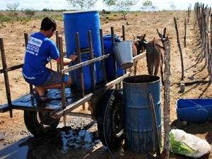 Cerca de 90% dos cursos de água foram afetados (Foto: Emater/Divulgação)