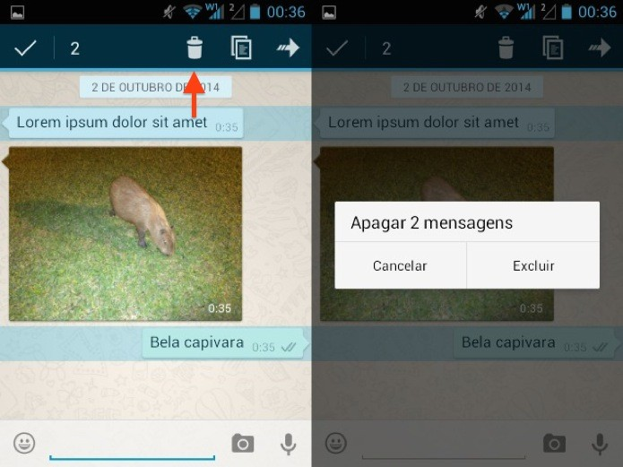 Excluindo mensagem no WhatsApp para Android (Foto: Reprodução/Helito Bijora)