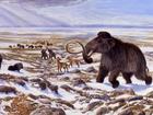 Cientistas desvendam os desesperadores dias finais de um grupo de mamutes na Terra
