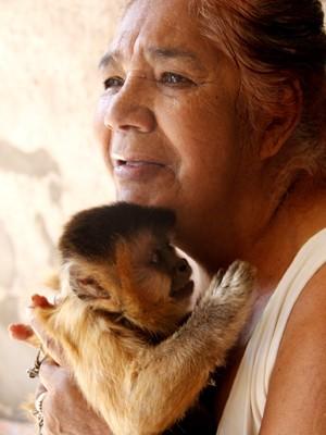 Macaco foi criado em São Carlos durante 37 anos (Foto: Fabio Rodrigues/G1)