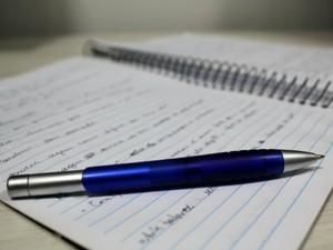 Em 2011, o índice do reajuste foi de aproximadamente 5% entre as escolas particulares (Foto: Halex Frederic/G1)