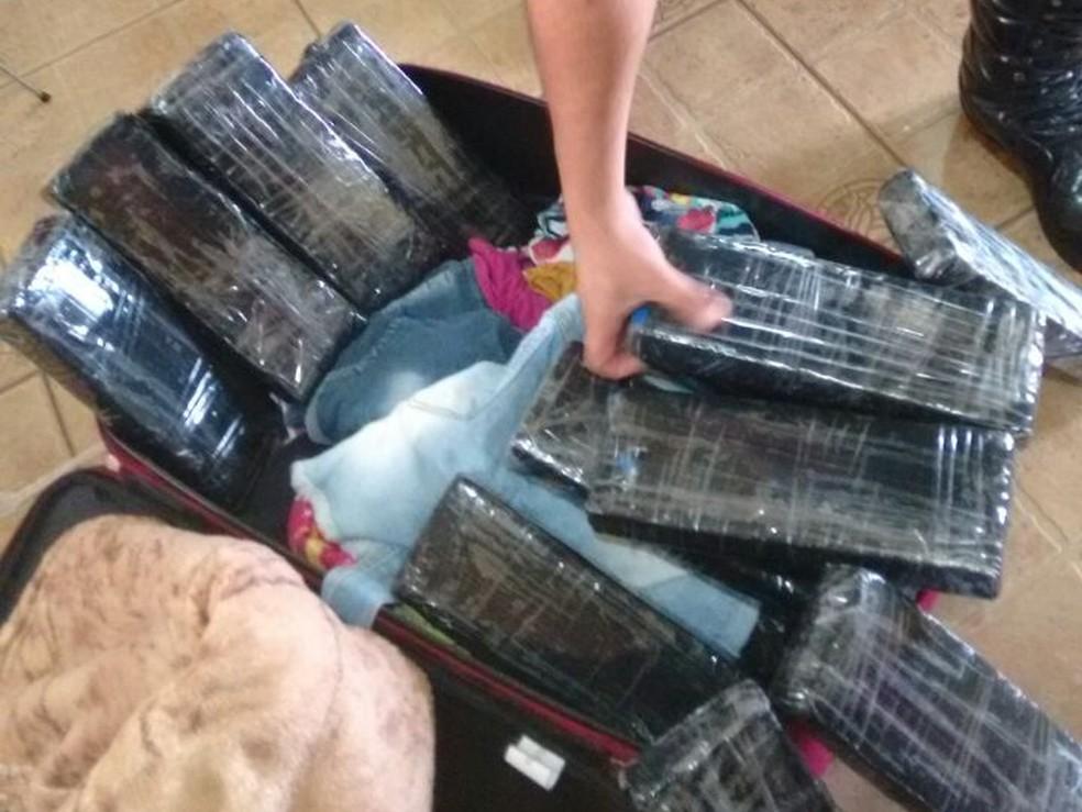 Tabletes de maconha foram apreendidos na rodovia em Santa Cruz do Rio Pardo (Foto: Polícia Rodoviária/Divulgação)