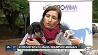Polícia Civil registra 41 casos de maus-tratos a animais