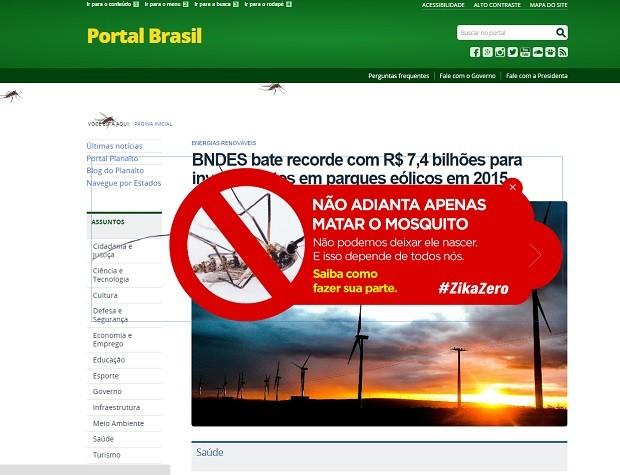 Sites exibem imagens sobre o combate ao mosquito  (Foto: Reprodução)