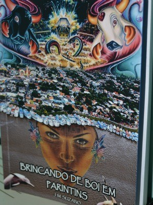 Livro sobre boi-bumbá será lançado em Manaus (Foto: Divulgação)
