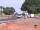 Nº de atropelamentos cresce em duas rodovias do noroeste paulista