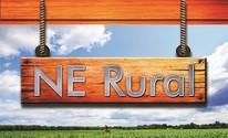 Assista às notícias do NE Rural (TV Verdes Mares/Reprodução)