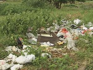 População precisa colaborar com a limpeza de terrenos e quintais  (Foto: Reprodução / TV TEM)