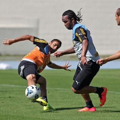 carlos alberto botafogo (Foto: Vitor Silva/SS Press)
