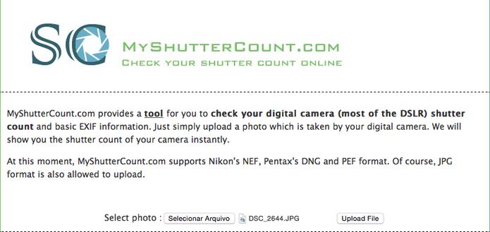 Ao abrir o site, escolha a foto no computador e faça o upload. (Foto: Karen Malek/TechTudo)
