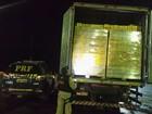 Motorista transporta 55 mil latas de cerveja com nota fiscal vencida