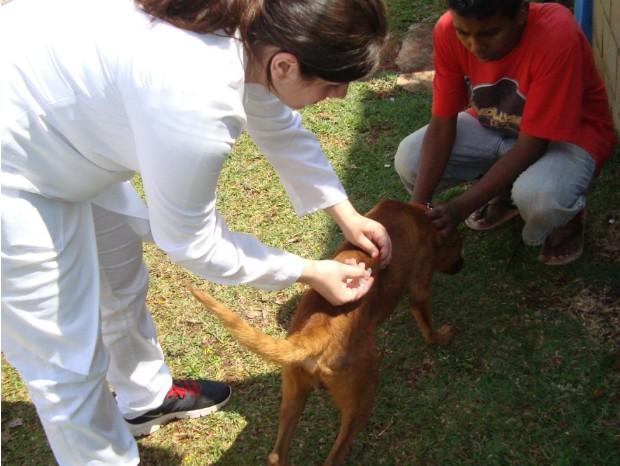 Campanha de vacinação contra raiva é promovida até dia 30 de outubro (Foto: Divulgação/ Prefeitura de Capão Bonito)