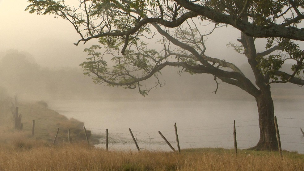 Frio acompanhado de vento é característico do Noroeste do RS (Foto:  Fernando Souza/RBS TV)