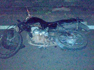 Ladrão furta motocicleta, atropela capivara e morre em Mato Grosso (Foto: Divulgação)