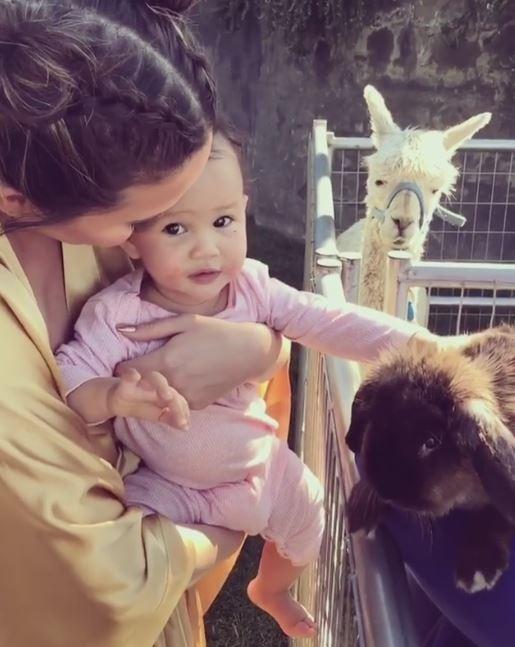 Chrissy Teigen apresenta Luna a coelhinhos muito fofos!   (Foto: Reprodução Instagram)