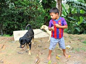 Calebe e o cão Robinho sempre estão brincando na área de casa, disse a mãe (Foto: Marilene Silva / Rede Amazônica)