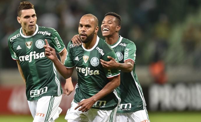 Alecsandro Palmeiras X Fluminense (Foto: Mauro Horita)