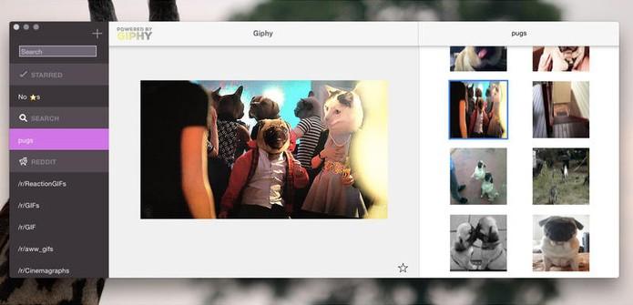 Saiba como encontrar e compartilhar GIFs com app para Mac (Foto: Divulgação/GIFs)