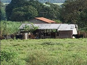 Moradores da zona rural de Uberlândia cobram mais policiamento (Foto: Reprodução/TV Integração)