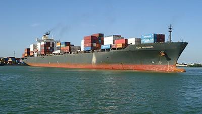 Navio tem 294m e é maior a atracar no Porto de Itajaí (Foto: Divulgação/Porto de Itajaí)
