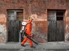 Governo do México diz que onze grávidas foram infectadas pelo zika