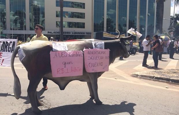 Manifestantes levaram vaca de plástico para protestar contra o Governo de Goiás (Foto: Vitor Santana/G1)