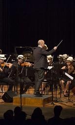 Orquestra Jovem Tom Jobim (Foto: Heloisa Bortz/Divulgação)