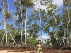 Laura Keller e Jorge Sousa posam para ensaio na Ilha do Marajó