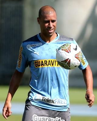 Treino Jorge Wagner Botafogo (Foto: Satiro Sodre/SS Press)