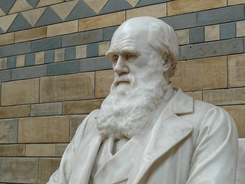Estatua de Charles Darwin (Foto: Pixabay)