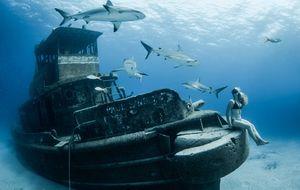 Mergulhadora posa para ensaio de fotos cercada por tubarões