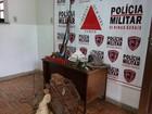 Dois são presos com armas, munições e chumbo em Passa Tempo