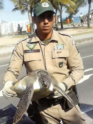 Tartaruga foi resgatada na praia do Recreio (Foto: Guarda Municipal/Divulgação)
