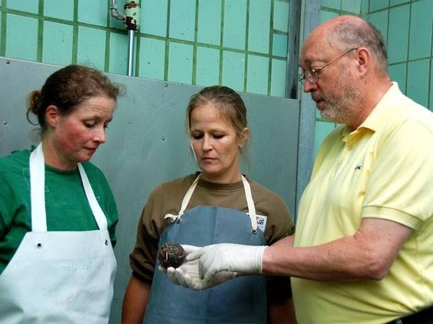Equipe do zoo com a bola de tÊnis que causou a morte (Foto: Divulgação/Zoo Frankfurt)