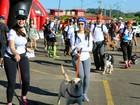 Votorantim recebe corrida de aventura para cães e donos neste sábado