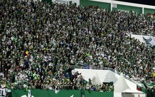 torcida Chapecoense x Corinthians (Foto: Diego Carvalho/Aguante/Chapecoense)