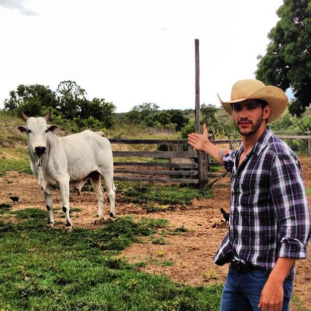Gusttavo Lima posta foto com o novo boi (Foto: Instagram / Reprodução)