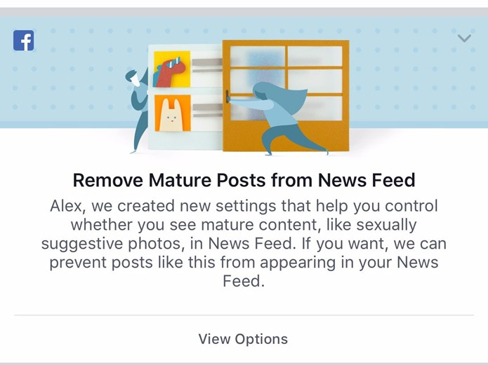 Recurso do Facebook vai impedir que usuário veja conteúdo adulto no feed de notícias (Foto: Reprodução/Business Insider)