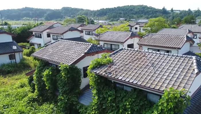Casas tomadas por plantas em Fukushima (Foto: Reprodução/ Takehana / The Asahi)