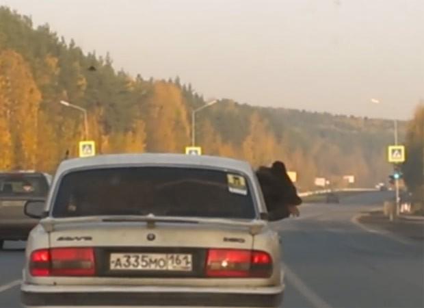 Urso foi flagrado passeando de carro na Rússia (Foto: Reprodução/YouTube/ViralHog)