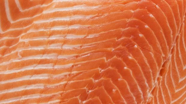 salmão (Foto: Getty Images)