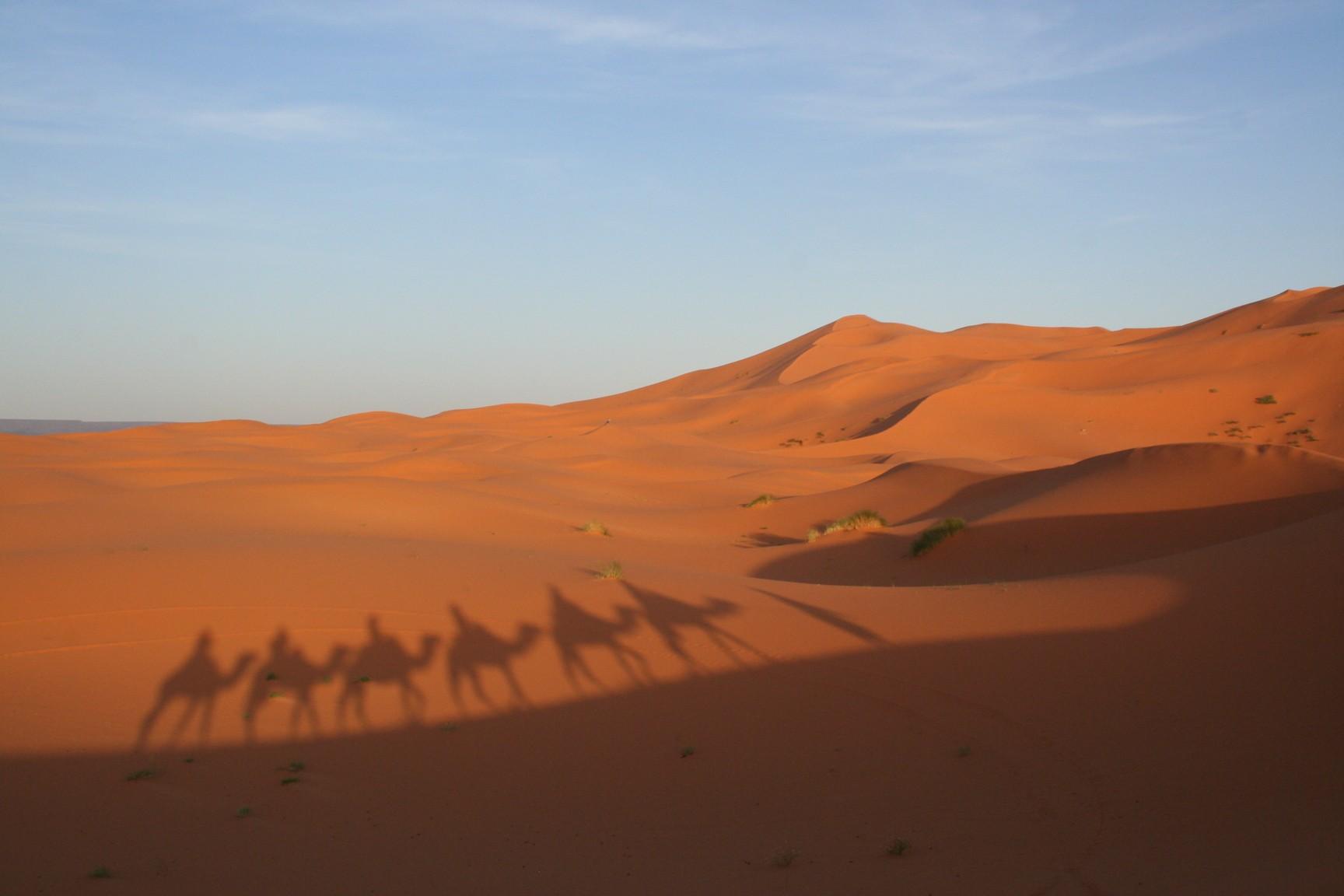 Deserto do Saara (Foto: Divulgação)
