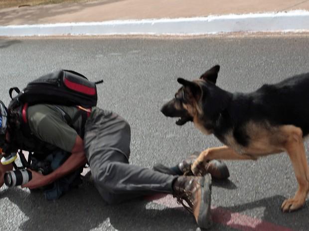 Depois de afastar os manifestantes próximo ao Estádio Nacional de Brasilia, policiais com cães agrediram dois fotógrafos: o da Folha, Fábio Braga (foto), e o fotógrafo Marcelo Marcelino. (Foto: André Coelho/Agência O Globo)