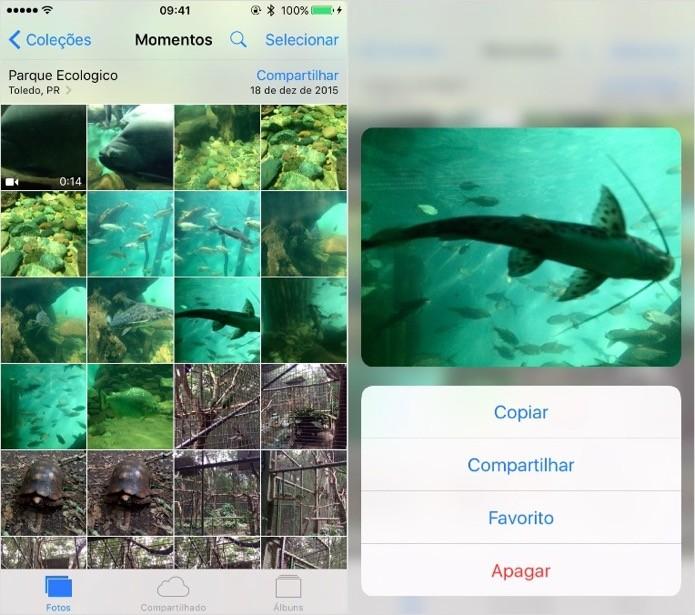 Pré-visualizando fotos e vídeos da galeria (Foto: Reprodução/Helito Bijora)