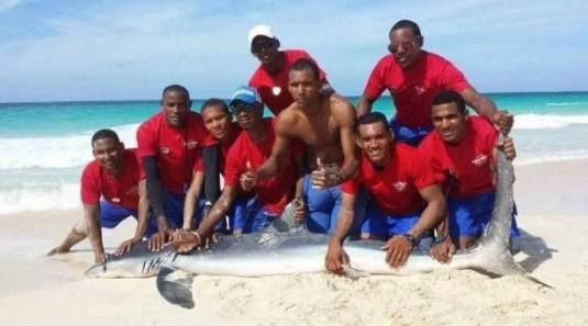 Salva-vidas posam com o tubarão