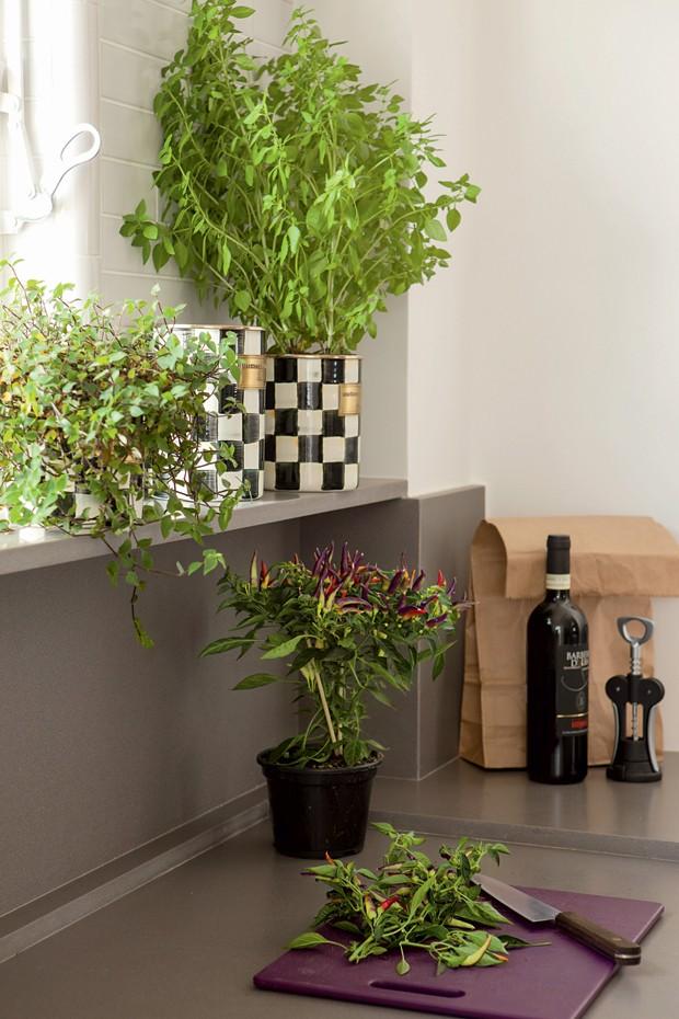 cozinha; Simone Carneiro e Alexandre Skaff, SAO Arquitetura (Foto: Edu Castello/Editora Globo)